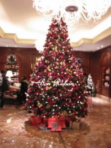白かぶりのクリスマス!!!