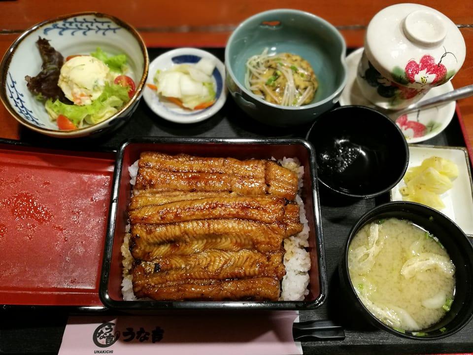首都マニラで高級の鰻を食す。