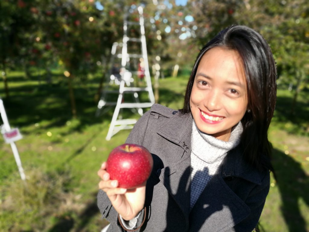 Who is the campion of Apple model? みんなでりんご狩り来た!